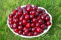 Fresh red cherry in white wicker plate on the lawn.Concept of beneficial properties of cherries for health,using of stone fruits