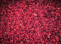 Fresh red cranberries Royalty Free Stock Photo