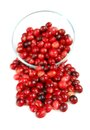 Fresh red cranberries glass bowl white background Royalty Free Stock Image
