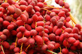 Fresh red dates Royalty Free Stock Photo