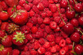 Fresh red fruit Royalty Free Stock Photo