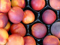 Fresh red peaches Stock Photography