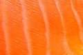 Fresh red salmon texture Royalty Free Stock Photography
