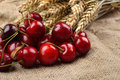 Fresh red and tasty cherries on jude background, with bunch of w Royalty Free Stock Photo