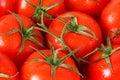 Fresh red tomato Royalty Free Stock Photo