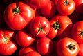 Fresh red tomatoes Stock Photo
