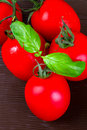 Fresh red tomatoes with basil Stock Photography