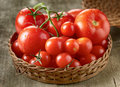 Fresh red tomatoes in a basket Stock Photography