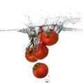 Fresh red tomatoes splash in water on white background closeup of and health falling into clear with big Royalty Free Stock Photography
