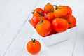 Fresh red tomatoes in white bowl on white wooden table wet Stock Image