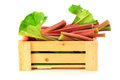 Fresh rhubarb in wooden crate picked on white background Stock Photos
