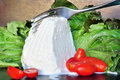 Fresh ricotta cheese cut with fork Royalty Free Stock Images