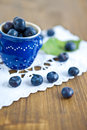 Fresh ripe blueberries Royalty Free Stock Photo