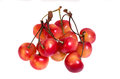 Fresh ripe cherries isolated on white Royalty Free Stock Photos