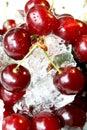 Fresh ripe cherry in ice Stock Image