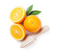 Fresh ripe oranges and juicer Royalty Free Stock Photo