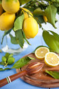 Fresh ripe organic lemons Stock Images