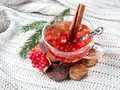 Fresh ripe pomegranate and red wine in a glass mug on a white knitted blanket Royalty Free Stock Photo