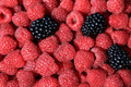 Fresh ripe raspberries and blackberries. Royalty Free Stock Photo