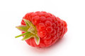 Fresh ripe raspberry with leaf isolated on the white background. Royalty Free Stock Photo