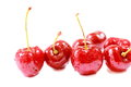 Fresh ripe red cherry berries  on white background. Royalty Free Stock Photo