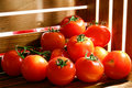Fresh Ripe Red Tomatoes in Farmer Wood Crate Stock Photo