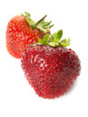 Fresh ripe strawberries, isolated Stock Photography