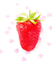 Fresh ripe strawberry isolated on white background studio macro clean Royalty Free Stock Image