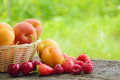 Fresh ripe sweet fruits on the wooden table in garden organic food Stock Photo