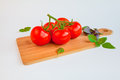 Fresh and ripe tomatoes and basil on cutting board Royalty Free Stock Photo