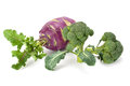 Fresh and ripe vegetables Royalty Free Stock Photo