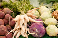 Fresh root vegetable carrot potatoes onion beet on market in summer Stock Photos
