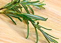 Fresh rosemary a closeup of on a wooden board Stock Photos
