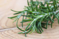 Fresh rosemary rosmarinus officinalis close up of Royalty Free Stock Images