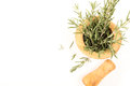 Fresh rosemary in  wooden mortar with pestle on withe background. Royalty Free Stock Photo