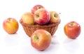 Fresh royal gala apples Royalty Free Stock Photo