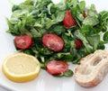 Fresh salad Stock Images