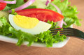 Fresh Salad with Boiled Egg Stock Images