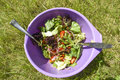 Fresh salad in a bowl in garden, summer time, healthy food. Royalty Free Stock Photo