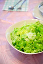 Fresh salad in  a bowl Royalty Free Stock Photo