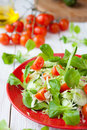 Fresh salad with cabbage and tomatoes food closeup Stock Images