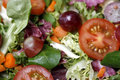 Fresh salad close-up Stock Images