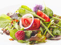 Fresh salad close up of mixed fruit and vegetable shallow focus Royalty Free Stock Photo