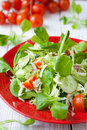 Fresh salad with lettuce and other vegetables food Royalty Free Stock Image