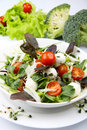 Fresh salad with mozzarella Royalty Free Stock Images