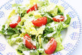 Fresh salad with yogurt Royalty Free Stock Photo