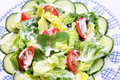 Fresh salad with yogurt a mixed Royalty Free Stock Photography