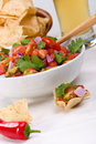 Fresh salsa and corn chips Royalty Free Stock Photos