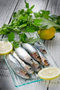 Fresh sardines with lemon Royalty Free Stock Photo