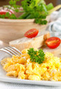 Fresh scrambled eggs Royalty Free Stock Photo